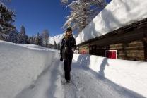 Achensee Tourismus / Pertisau