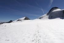 Zuckerhütl 3507m - Tirol