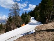 Skipiste im Frühjahr am Patscherkofel, Tirol, Austria
