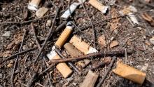 Zigarettenstummel, Zigarettenkippen