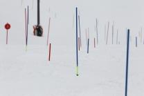 Slalomstangen, Kippstangen, Torlauf