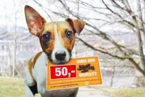 Hundeverordnungsschild der Stadt Wien