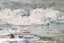 Schwimmen / Schwimmbad / Wasser / Wasserspritzer