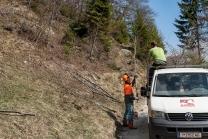 Holzarbeiten / Arzler Alm, Nordkette, Innsbruck, Tirol, Austria