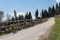 Mountainbikes / Arzler Alm, Nordkette, Innsbruck, Tirol, Austria