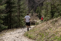 Wanderer / Arzler Alm, Nordkette, Innsbruck, Tirol, Austria