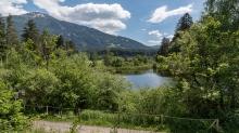 Seerosenweiher, Lans, Tirol Austria