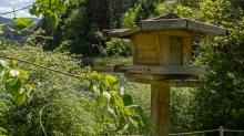 Vogelhaus / Seerosenweiher, Lans, Tirol Austria