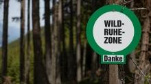 Wildruhezone / Patscherkofel, Tirol, Austria