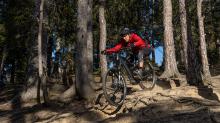 Mountainbiker, Downhiller /  Viller Kopf, Paschberg, Vill, Innsbruck, Tirol, Austria