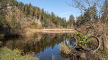 Seerosenweiher im Herbst, Lans, Tirol, Austria
