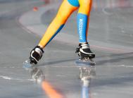 Eisschnelllaufschuhe, Eislaufschuhe
