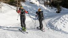 Skitourengeher am Vitalweg Patscherkofel, Tirol, Austria