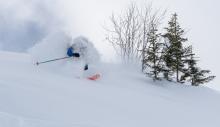 Tiefschneeskifahrer / Skizentrum Schlick 2000, Stubaital, Tirol, Austria