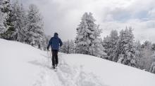 Freerider / Patscherkofel, Tirol, Austria