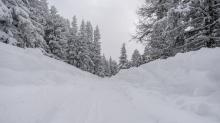 Skitourenspur / Patscherkofel, Tirol, Austria