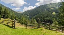 Arztal, Ellbögen, Tirol, Österreich