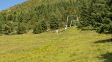 Skilift, Skiabfahrt im Sommer / Patscherkofel, Tirol, Österreich