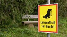 Hinweisschild: Leinenpflicht für Hunde!