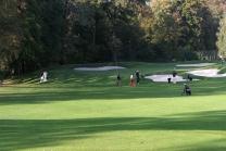 Bene Golf Finalturnier 2008